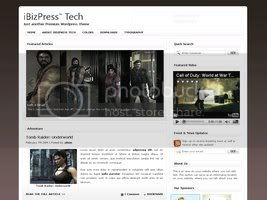 Wordpress Themes iBizPress Technology